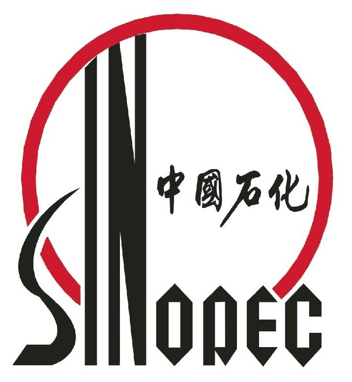 Project Experience Siveco China 喜科